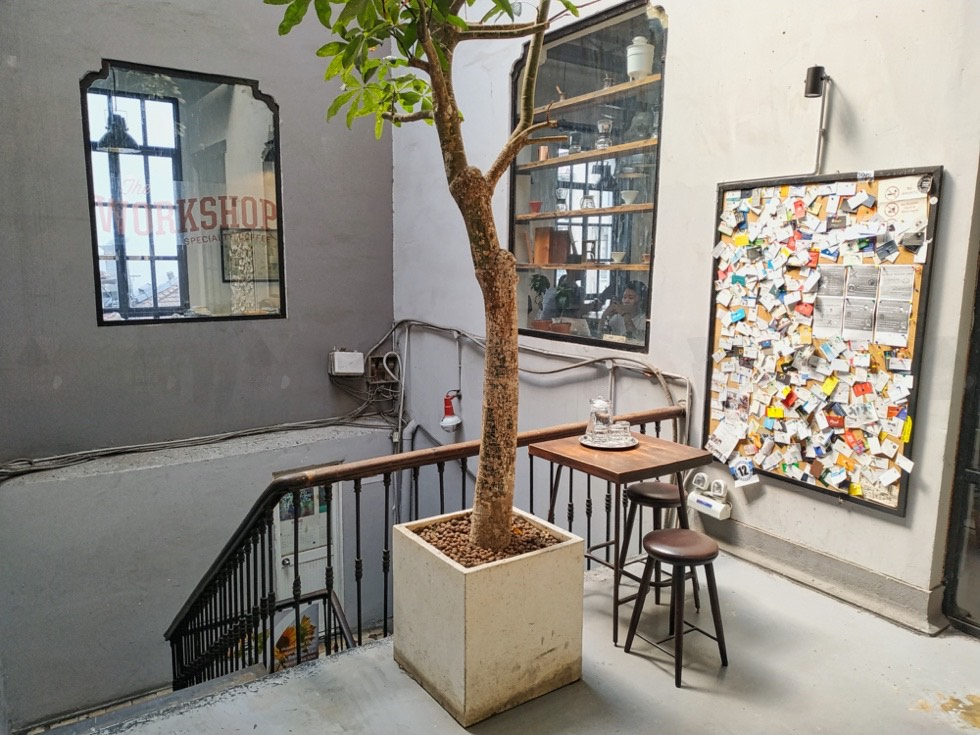The Workshop Specialty Coffee Tree